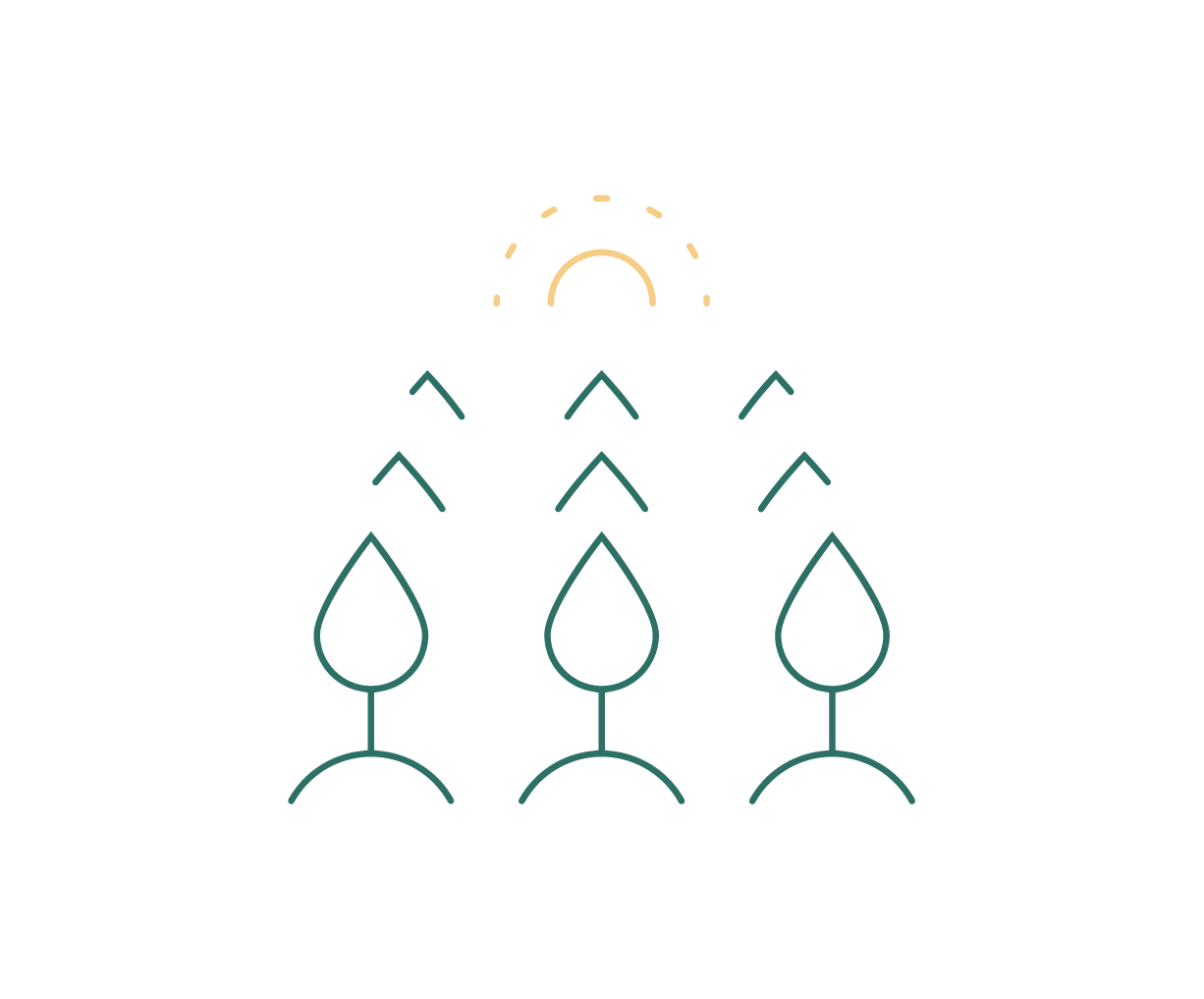 crop rotation icon colored-01